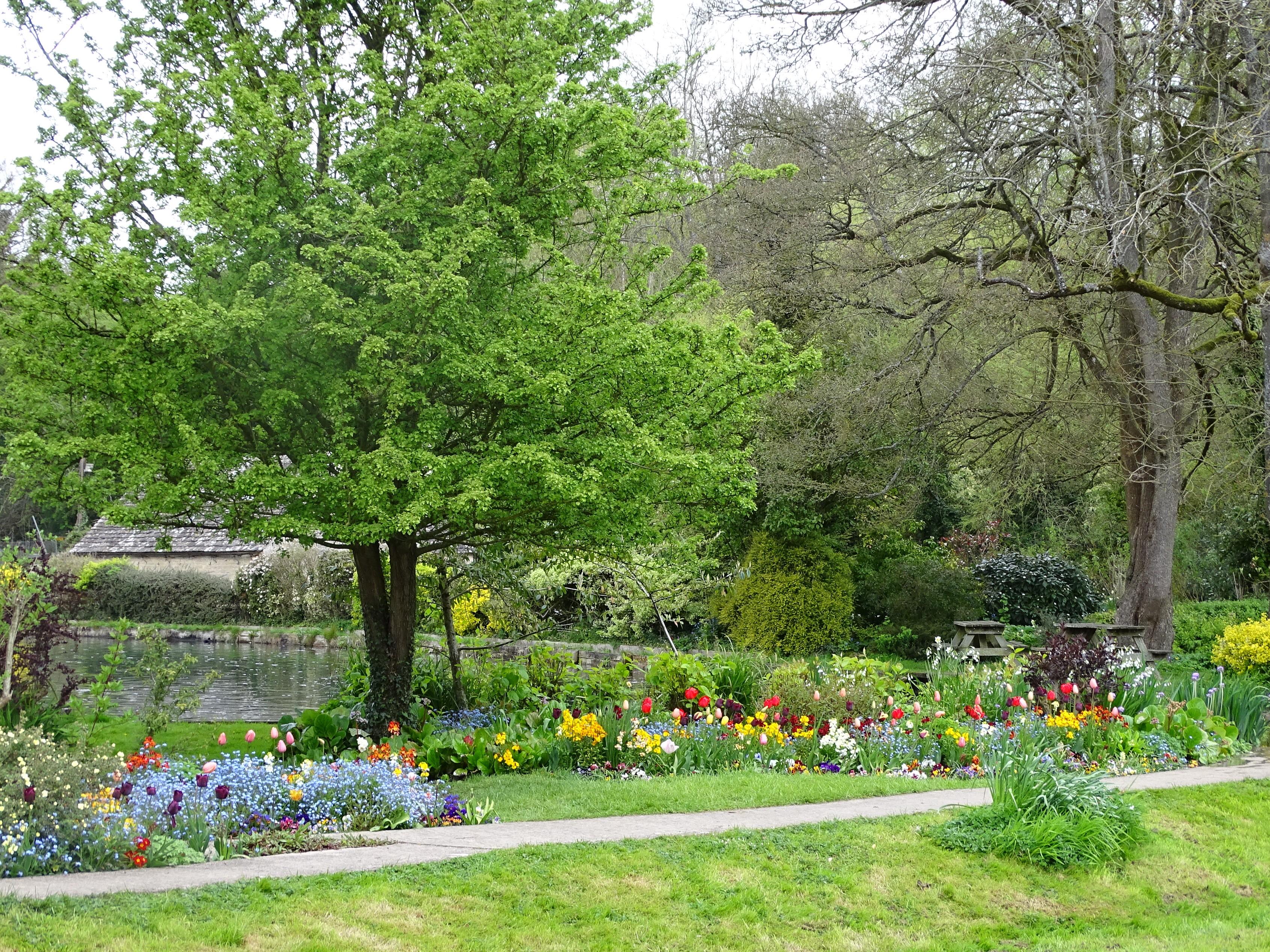 Bibury garden flowers