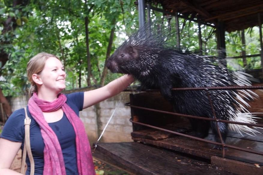 eerste keer SVRine belgische blogger blog stekelvarken sri lanka