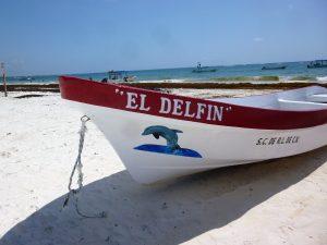 mexico cancun svrine playa de pescadores strand yucatan