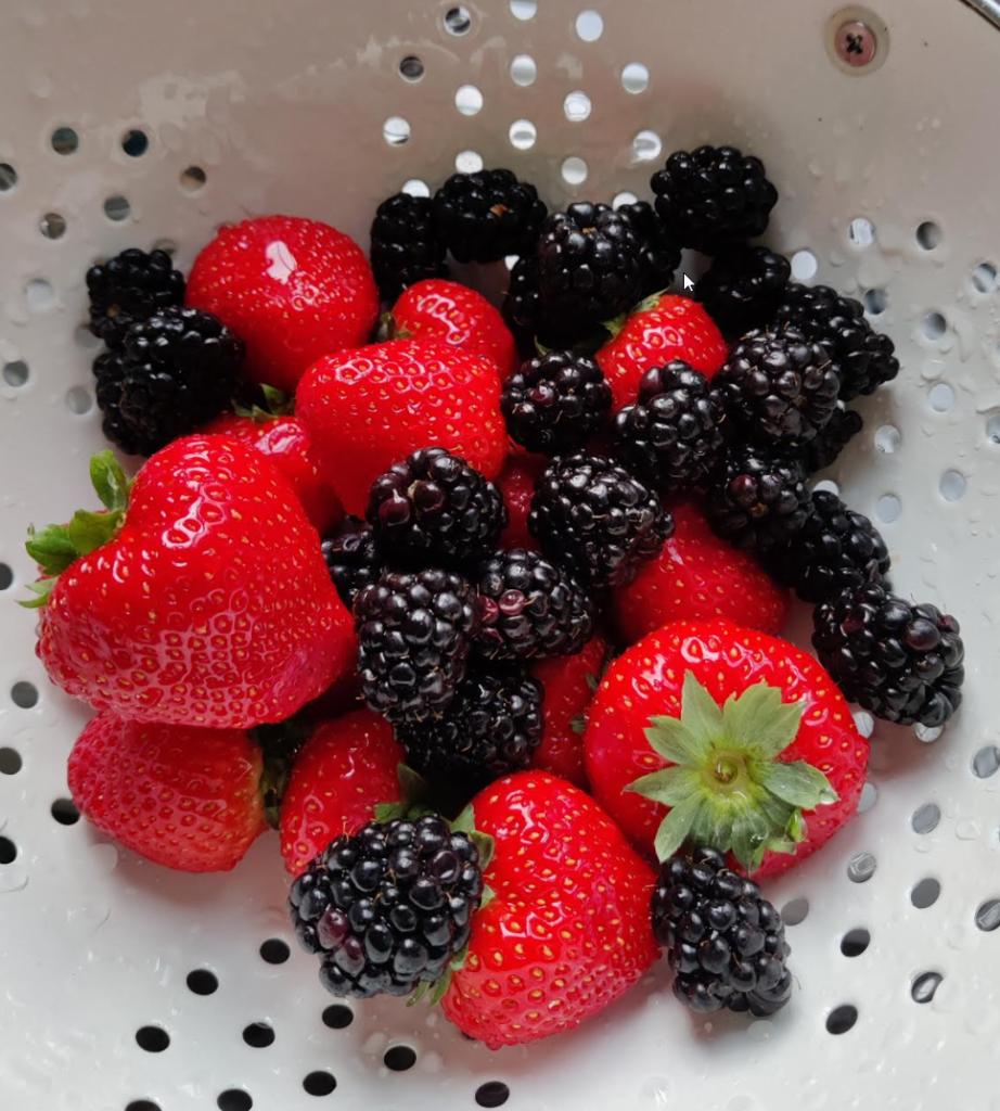 rode aardbeien zwarte braambessen